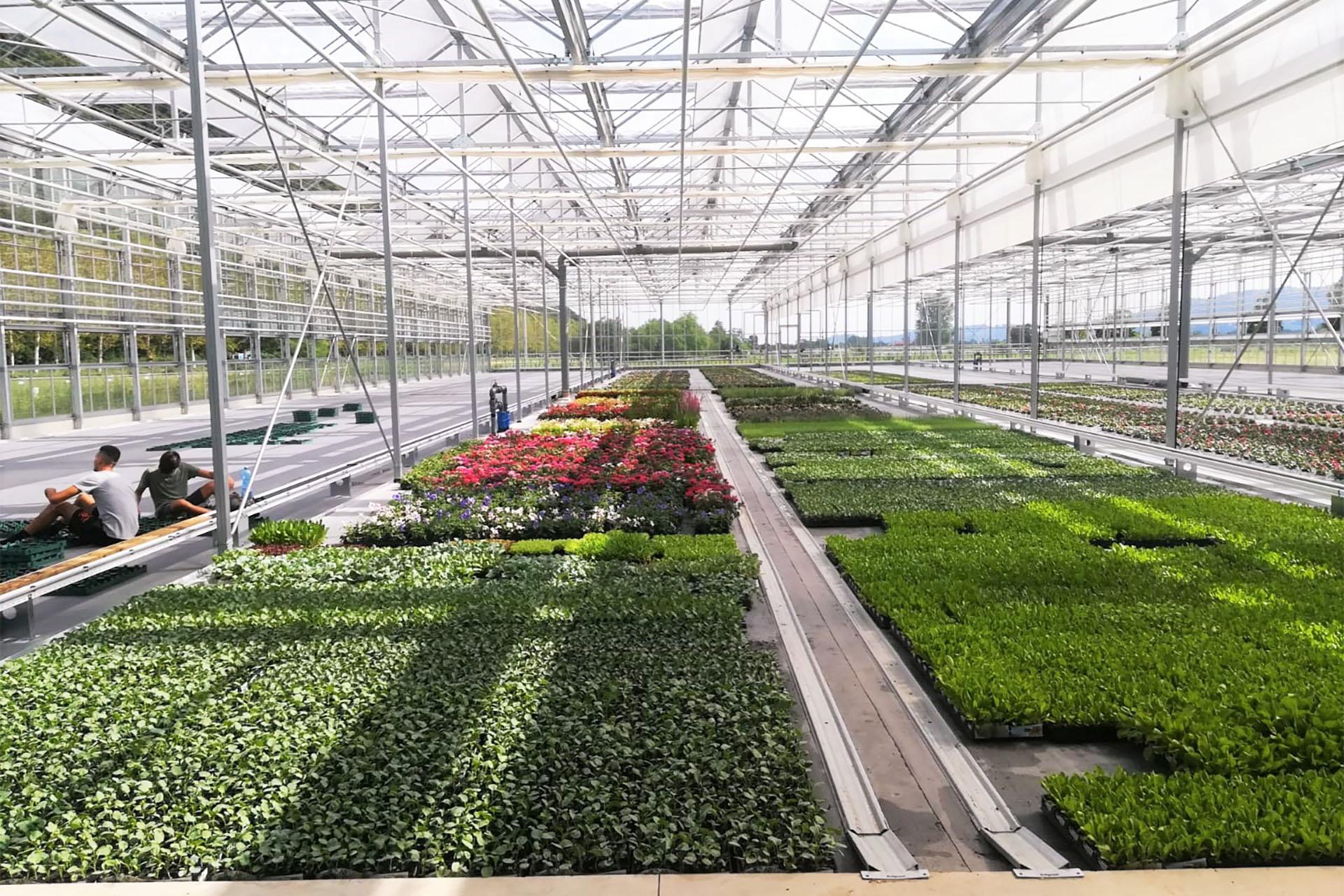 garden ghisa per garden center